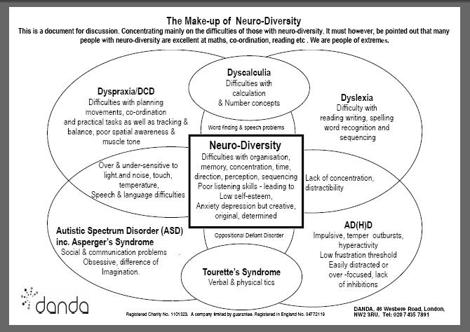 danda the makeup of neuro diversity
